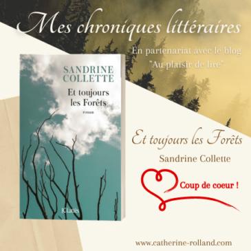 Et toujours les Forêts, de Sandrine Collette